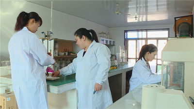 shijiazhuang xinsheng chemical co.,ltd